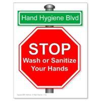 Hand Hygiene Blvd poster